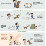 Good Interactions for kids and pets