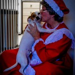 Pet Sitter Vicki playing Mrs Claus for House Calls Pet Sitting clients in Livermore, CA