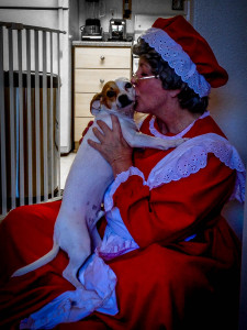 Loves and kisses by House Calls dog walker Mrs Claus for service anniversary