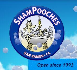 pet grooming San Ramon