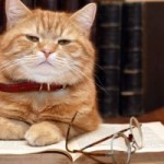 Cats are smart they love House Calls Pet Sitting
